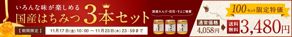 人気の蜂蜜3本セット
